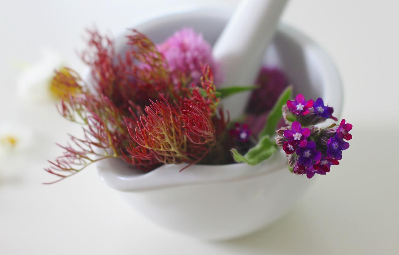 Remèdes naturels ou médicaments pour se soigner?